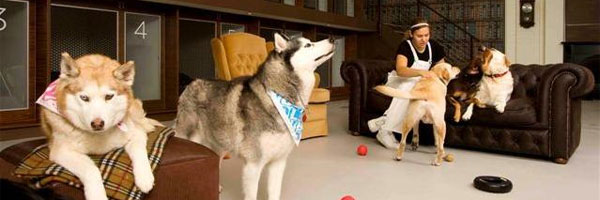 hoteles de mascotas