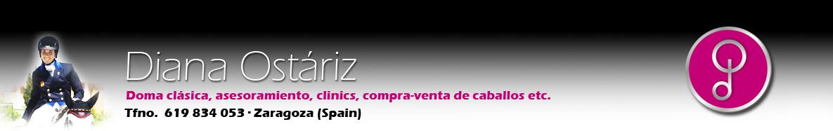 Diana Ostariz - Doma clásica y compra venta de caballos - Dressage (Zaragoza, Spain)