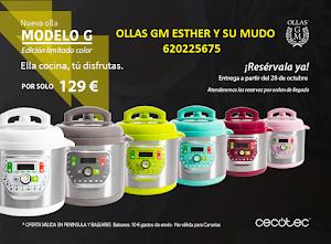 GM MODELO G DE COLORES