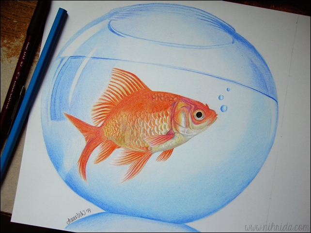 Goldfish Colored Pencils Drawing