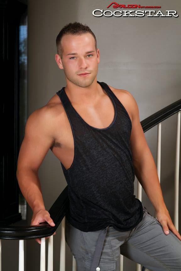 Gay Porn Star's Hairy Armpits