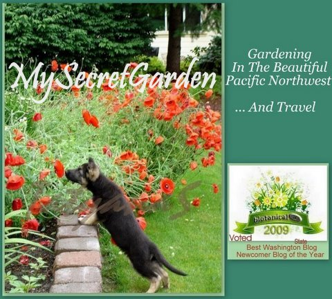 MySecretGarden