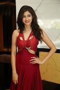 Tanvi Vyas latest glam pics-thumbnail-15