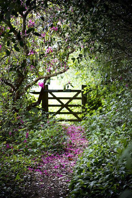 My Secret Garden Dreaming Gardens