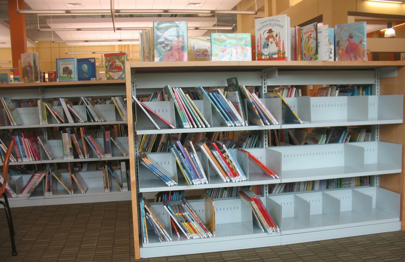 Amazing photo of the Annandale Blog: Concerns about empty library shelves with #976834 color and 1600x1037 pixels