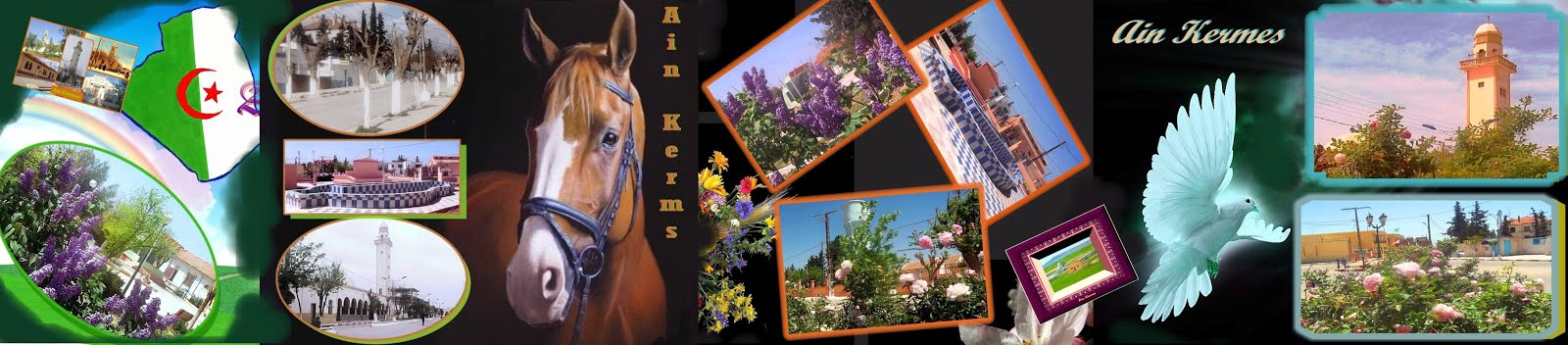 histiore et culture patrimoine d' Ain kermes
