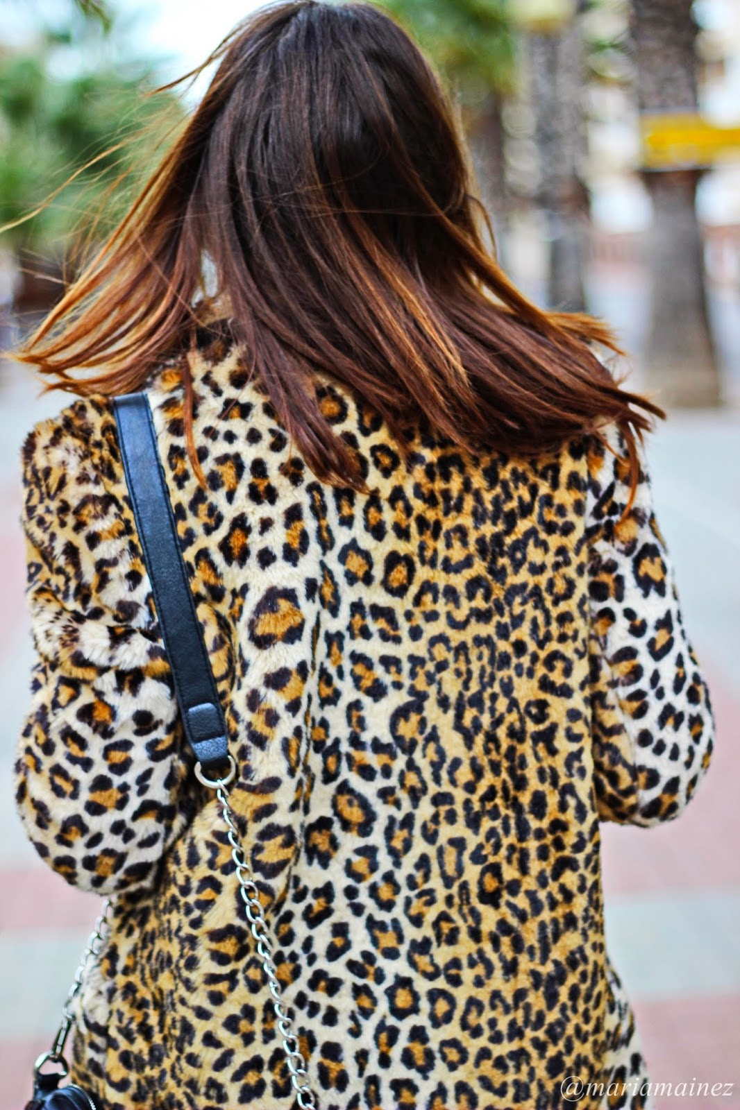 Streetstyle - Invierno 2015- Animal print coat - Zara - Calzados Sandra - bbeautiful by maria