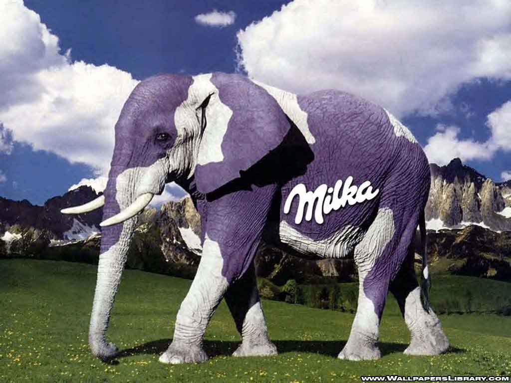 http://3.bp.blogspot.com/-yG7uMmNYsv4/UO1x0X-MsuI/AAAAAAAABAQ/65Cth48i-T0/s1600/milka-elephant-funny-wallpaper-1.jpg