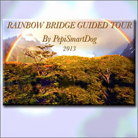 The Rainbow Bridge Guided Tour