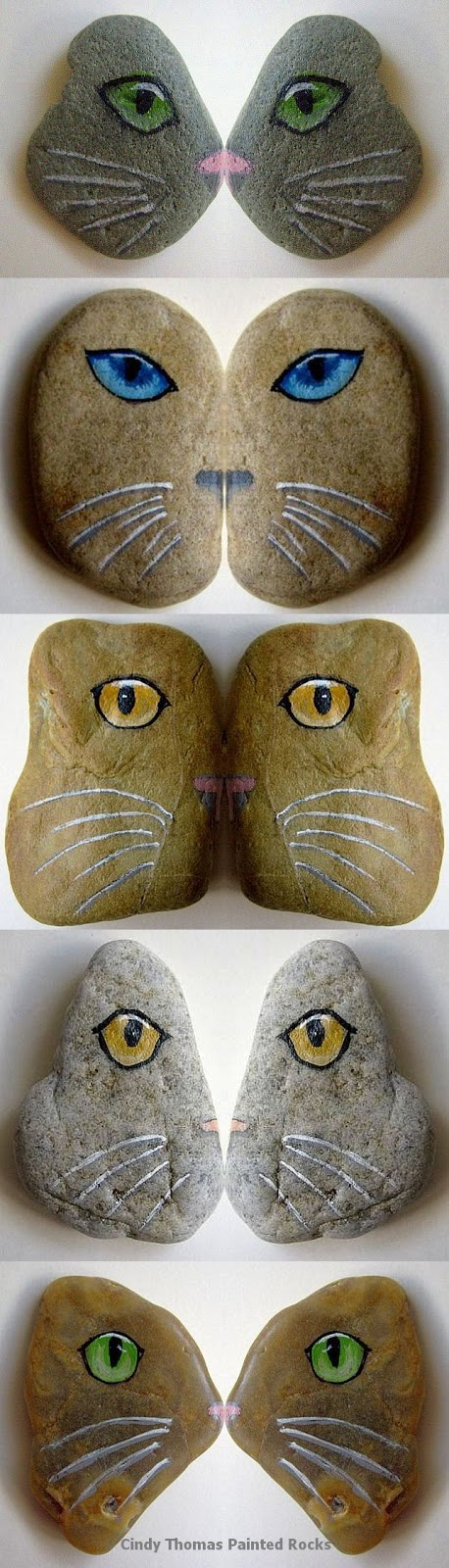 painted rocks, cats, kitties, stones, rock painting, Cindy Thomas