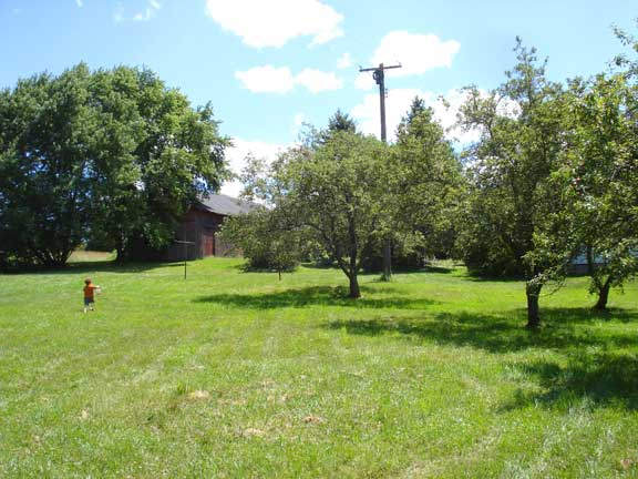 farmhouse orchard