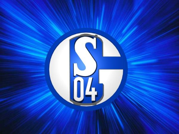 1 fc schalke 04:
