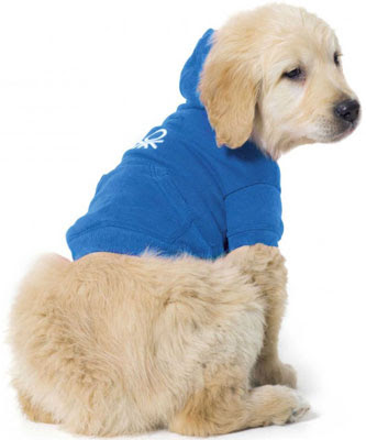 sudaderas con capucha para perros