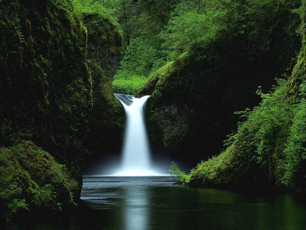 http://3.bp.blogspot.com/-yHICO87B0Vw/T-howH-UIVI/AAAAAAAAAAM/IdxwYKY9j18/s1600/forest-waterfall-wallpaper.jpg