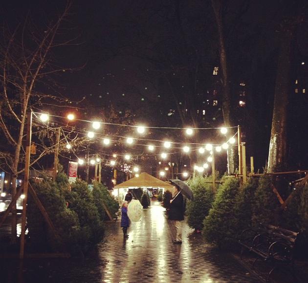 nyc christmas trees