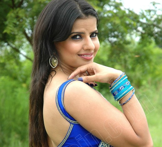 Madhu Sharma Hot Saree Photo Gallery