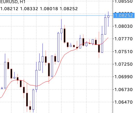 Pengalaman forex trader