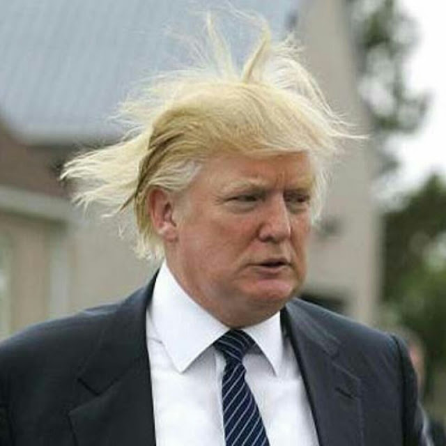 A head shot of Donald Trump with the wind blowing his hair all around.