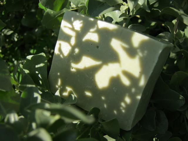 Jabón en la sombra