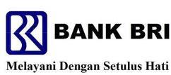 BRI (Bank Rakyat Indonesia)