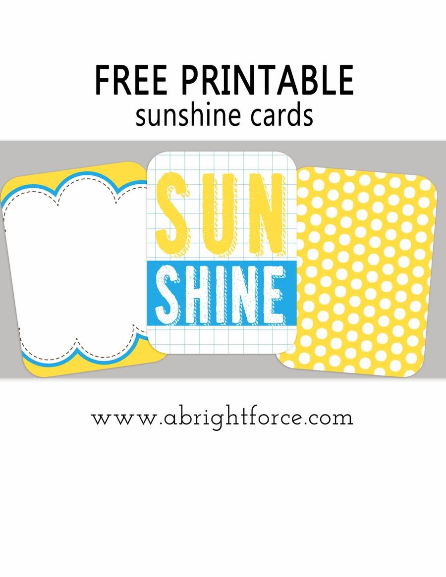 www.abrightforce.com