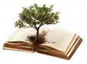 Concursos Literários - blog especializado