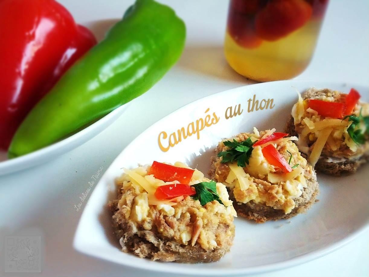 Les plus belles recettes du monde archives for Canape au fromage
