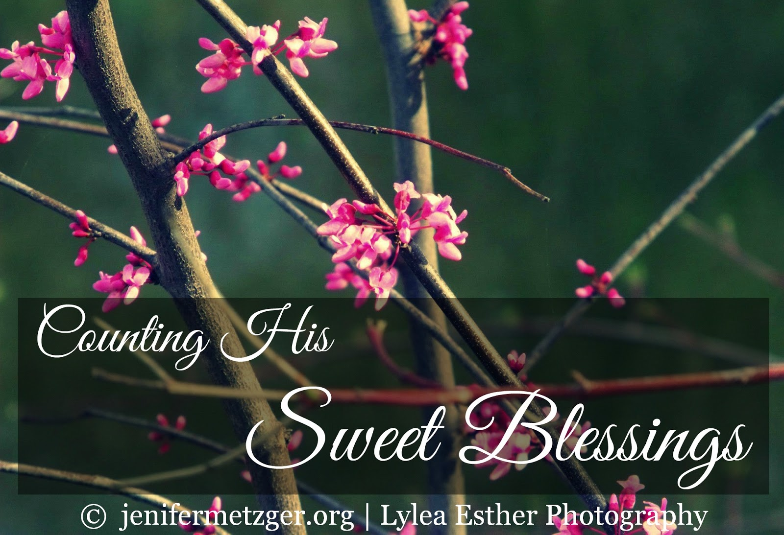 Counting His Sweet #Blessings #thanksgiving #gratefulness