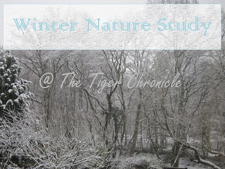 http://thetigerchronicle.blogspot.co.uk/search/label/winter