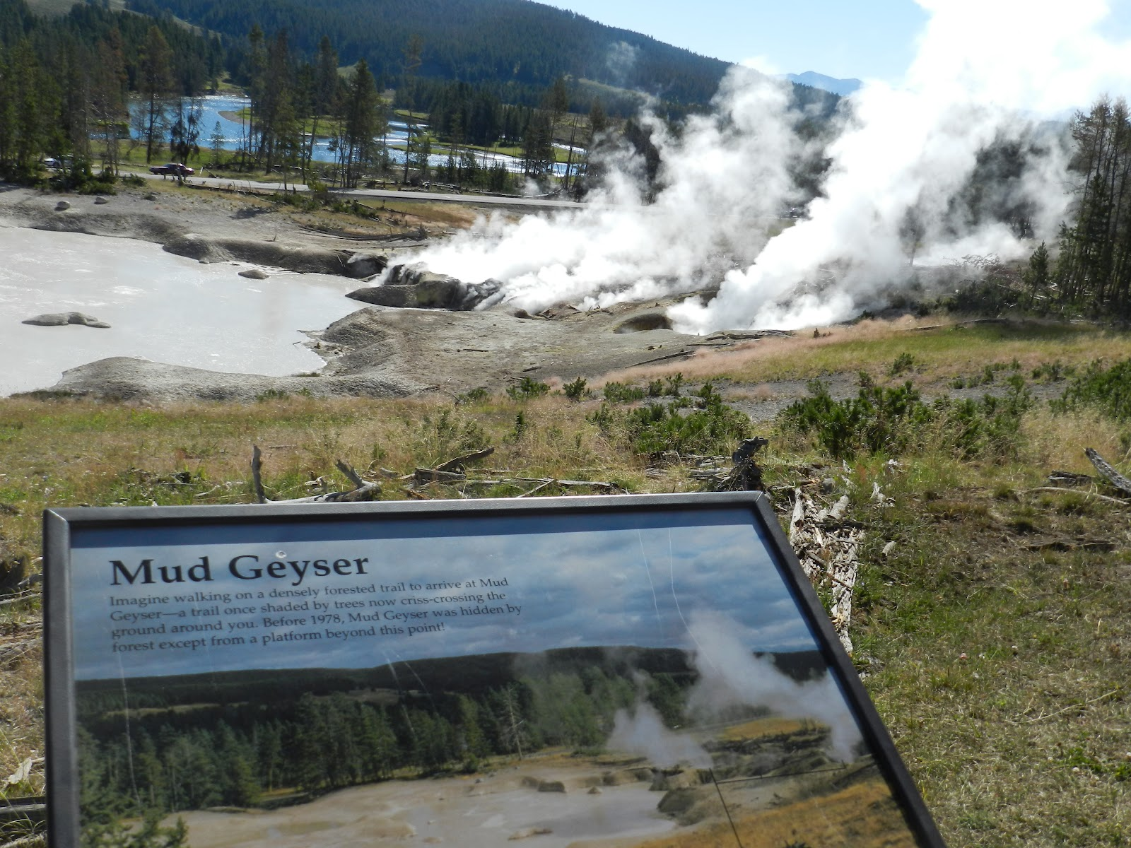 our first stop was at mud volcano more bubbling mud and geysers this is located between fishing bridge and canyon village on the map above