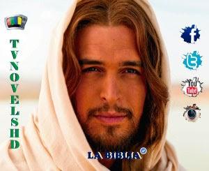 Ver La Biblia Capítulo 12 Online