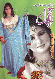 Aanchal Digest January 2013 pdf