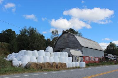 Barn+and+round+bales.jpg