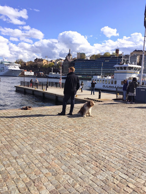 man with dog stockholm