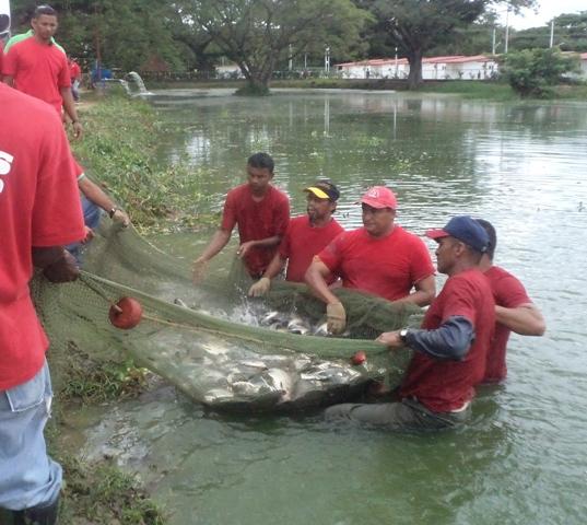 Mc noticias entregadas 150 petrocasas a trav s de la Lagunas para cachamas