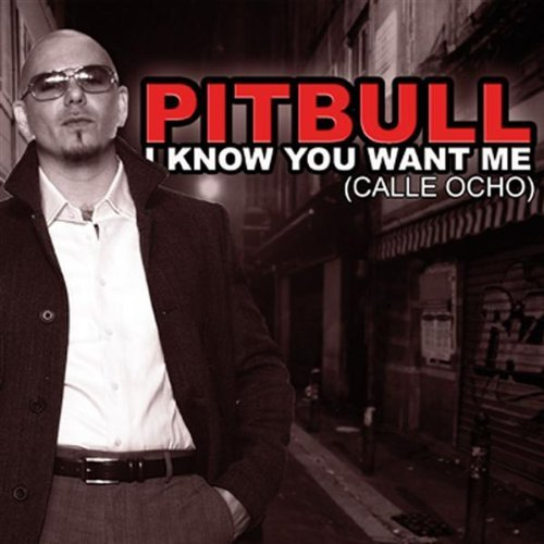Pitbull i know you want me video pitbull music free for 1234 get on the dance floor mp3 songs free download