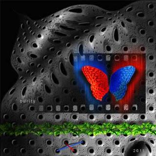Digital imagem - Redblue te dá asas
