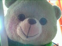 my TEDDY la ..