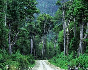 Ruta Austral de Chile en bicicleta