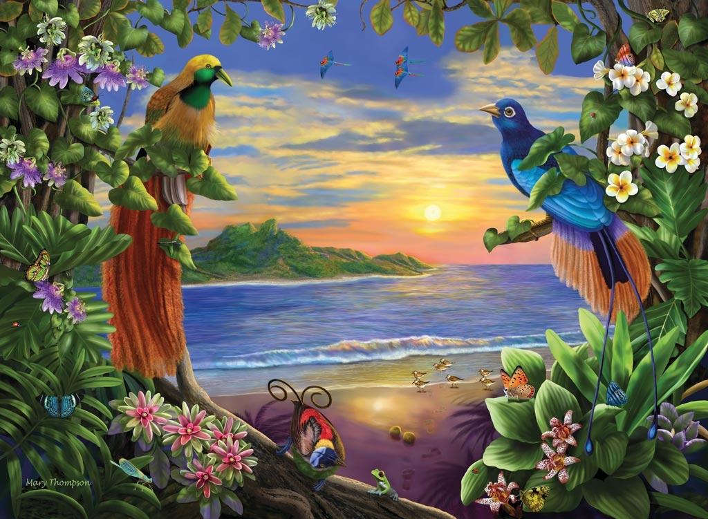 Bird of paradise animal drawing - photo#25
