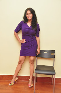 asha saini  Picture stills at sahasra sucess meet(31).jpg
