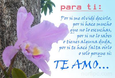Para Ti | Te Amo