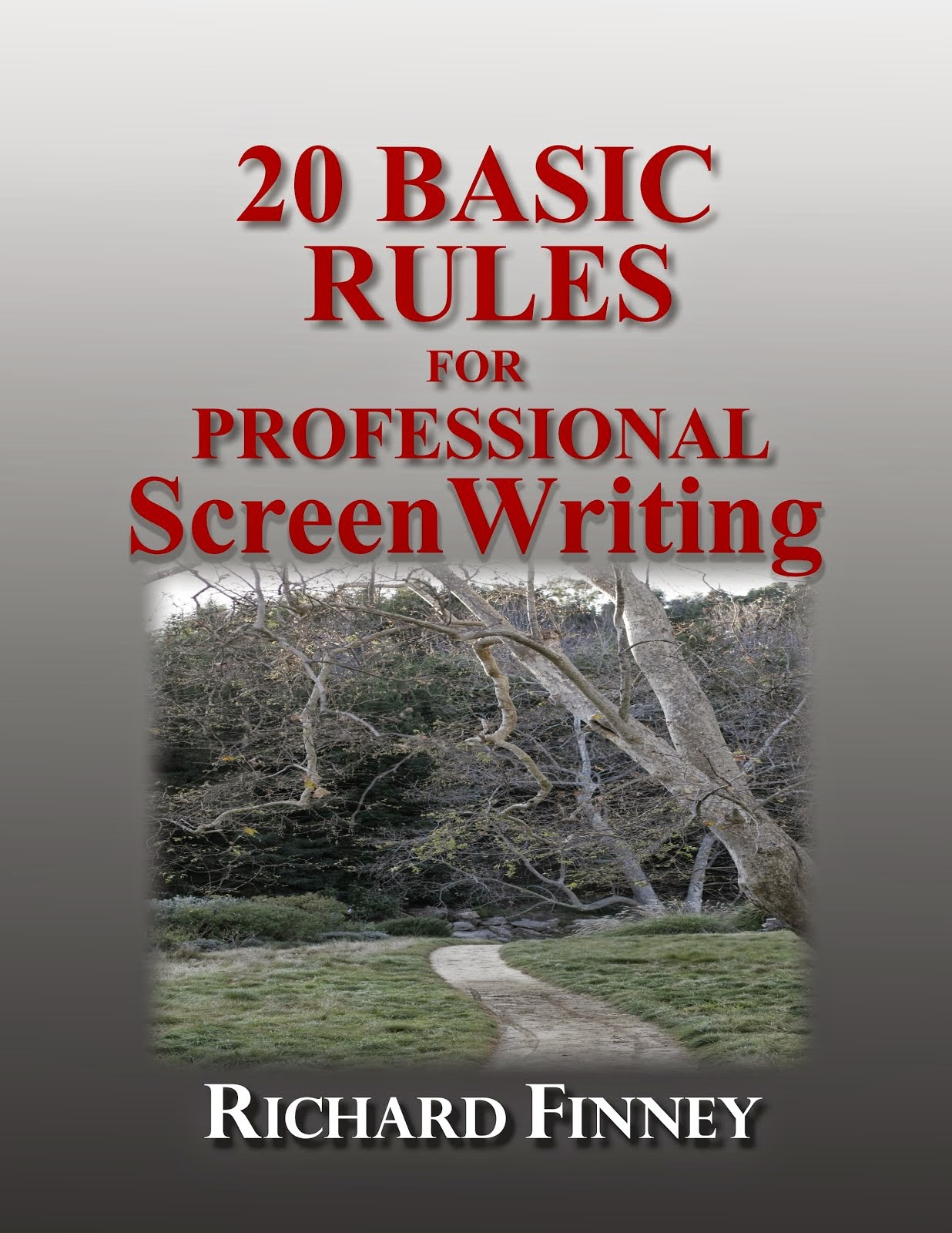 "GET THE KINDLE BOOK OF ""20 BASIC RULES"" FOR FREE!!!"