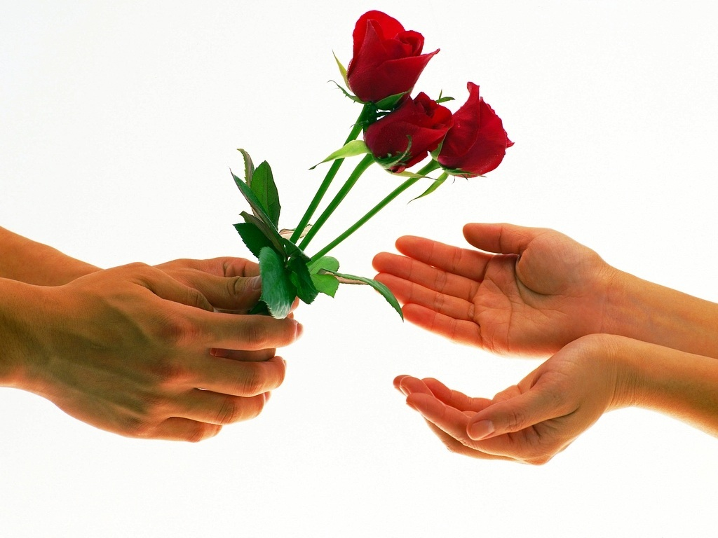 6 Imágenes de rosas con frases de amor con movimiento