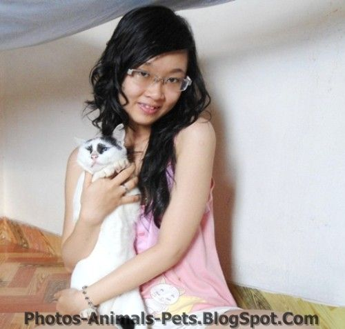 http://3.bp.blogspot.com/-yM8-yKxvmtI/TxhLrDY89LI/AAAAAAAAC8M/KM1ciNxg57w/s1600/images%2Bof%2Bcats.jpg