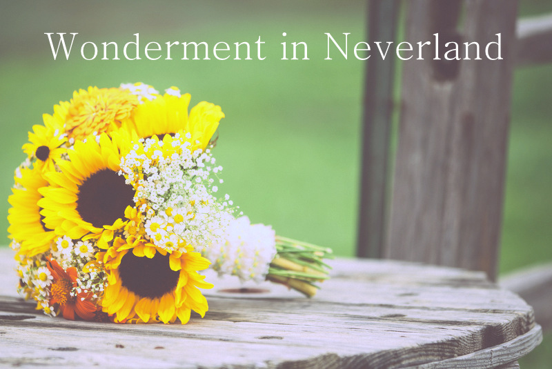 Wonderment in Neverland