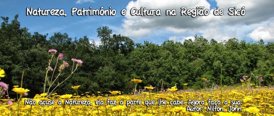www.azinheiragate.blogspot.com