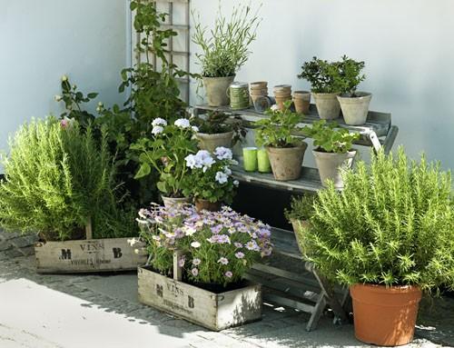 Dcor de Provence Outdoor Spaces