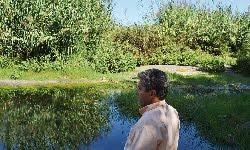 Mijas dragará el cauce del río Fuengirola para evitar nuevas inundaciones en Las Lagunas