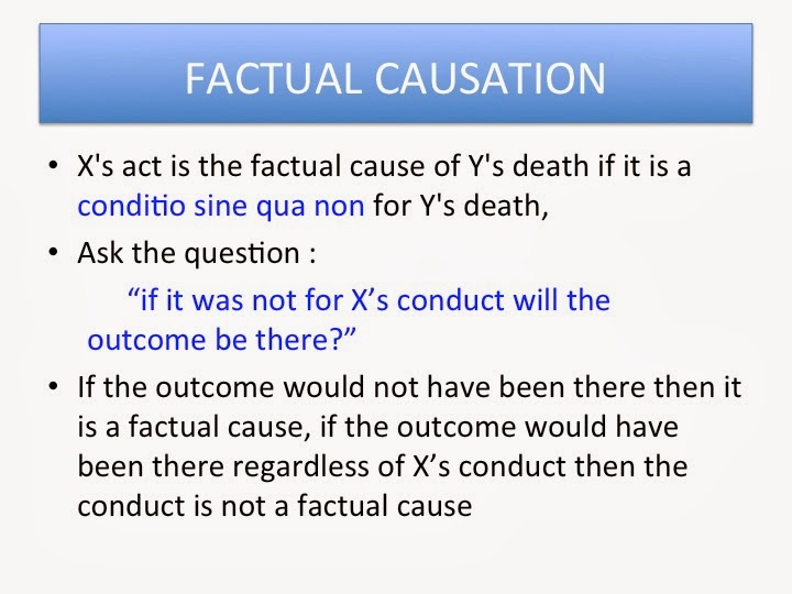 causation in criminal law pdf